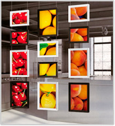 colors-digital-display-system-1